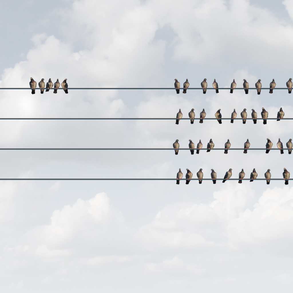 Two flocks of birds sitting on 4 power lines. 5 of the birds are sitting in a separate group on one of the lines, while the rest sit away from them in their own group.